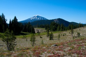 Finally, we get a good glimpse of Mt. Bachelor