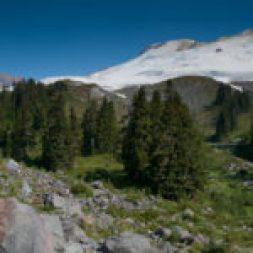 Pretty meadows amid jumbled rock set at the base of Mt. Baker