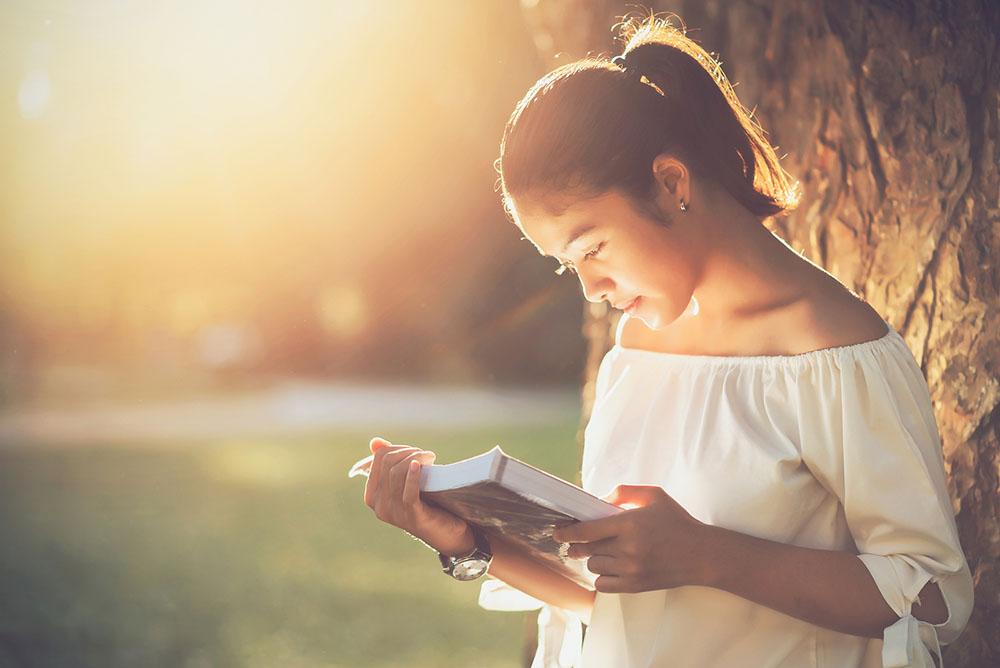 Visão Periférica: Ler livro no sol
