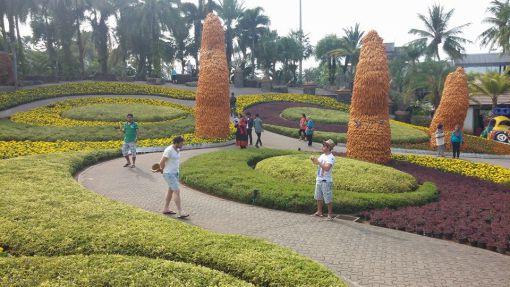 botanik-park-misir-agaclar