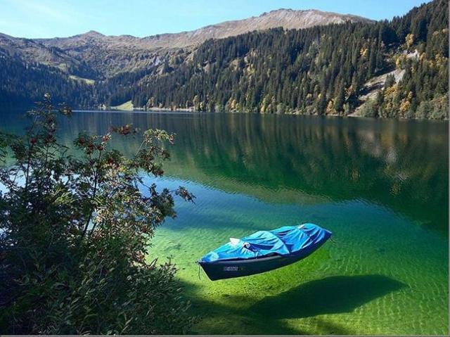 Yeni zellandada göller inanılmaz temiz.