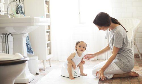 Tuvalet alışkanlığında gerekli olan malzemeler, Tuvalet Alışkanlığında Gerekli Malzemeler, Tatlı Bir Telaş, Tatlı Bir Telaş