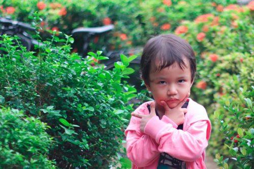 İnatçı Çocuklar, İnatçı Çocuklar ile Nasıl Başa Çıkılır, Tatlı Bir Telaş, Tatlı Bir Telaş