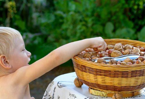 Çocukların Beyin Gelişimine Yardımcı 10 Besin, Çocukların Beyin Gelişimine Yardımcı 10 Besin, Tatlı Bir Telaş, Tatlı Bir Telaş