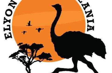 ELYON TOURS TANZANIA LIMITED
