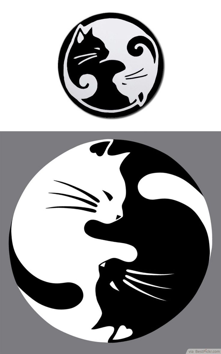 Black Ying Yang Tumblr And White