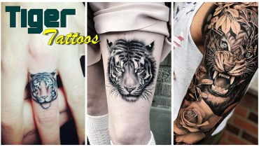 Tiger_tattoos_1  40+ Tiger Tattoo Designs – Show Strength, Courage and Beauty Tiger Tattoos 1