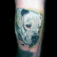 50+ Dog Tattoo Ideas