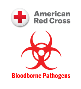 Blood Borne Pathogen