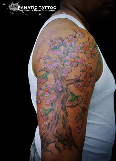 桜 木 枝 cherry blossom tree