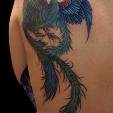 鳳凰 phoenix