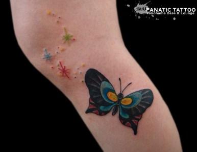 蝶々butterfly