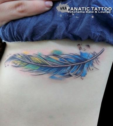 羽根 feather