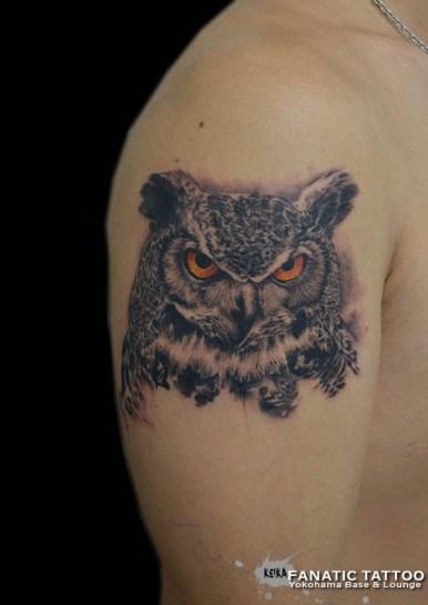 ミミズク owl