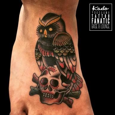 フクロウ スカル owl skull