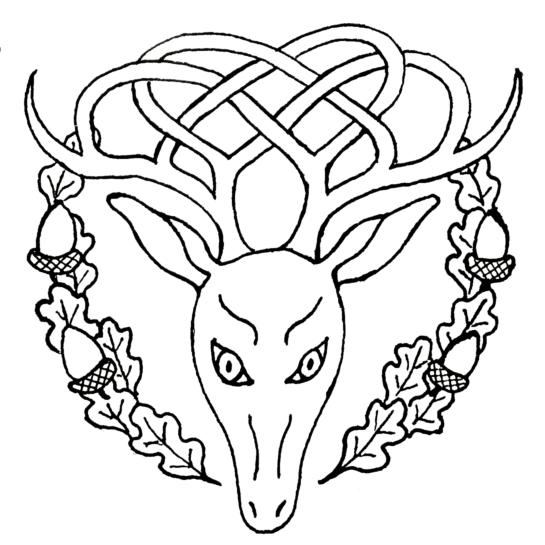 Crown Of Thorns Tattoos Rose Amp Pentagram Temporary