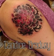 Candice Bradley Book your appointment! Calico Queen Tattoo Crested Butte, CO