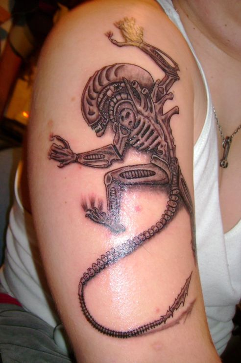 Galery Tattos The Best Tattoo Ideas And Designs