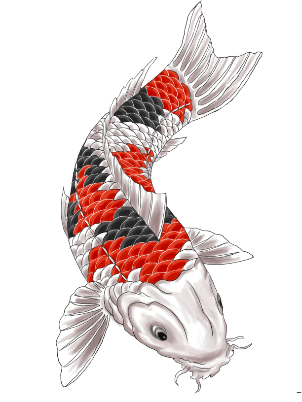 Koi Fish Tattoo Designs Choosing Superb Japanese Or Ideas And Designs