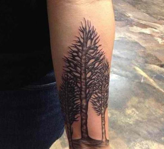 50 Tree Tattoo Designs For Men And Women Part 2 Ideas And Designs