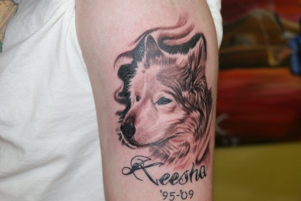 Dog Portrait Best Portrait Tattoo Artist Tampa 1603 Tattoo Ideas And Designs