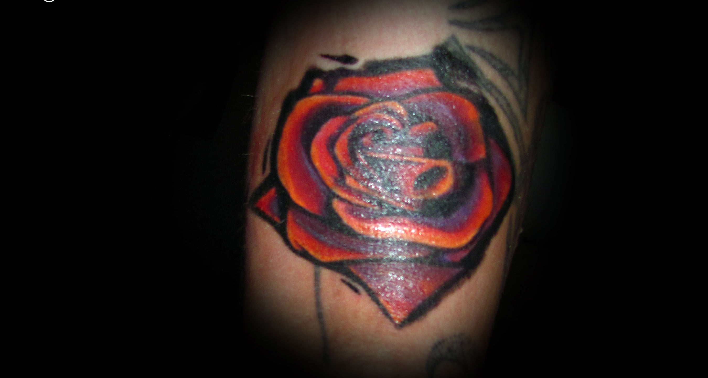 1000 Ideas About Single Rose Tattoos On Pinterest Red Ideas And Designs