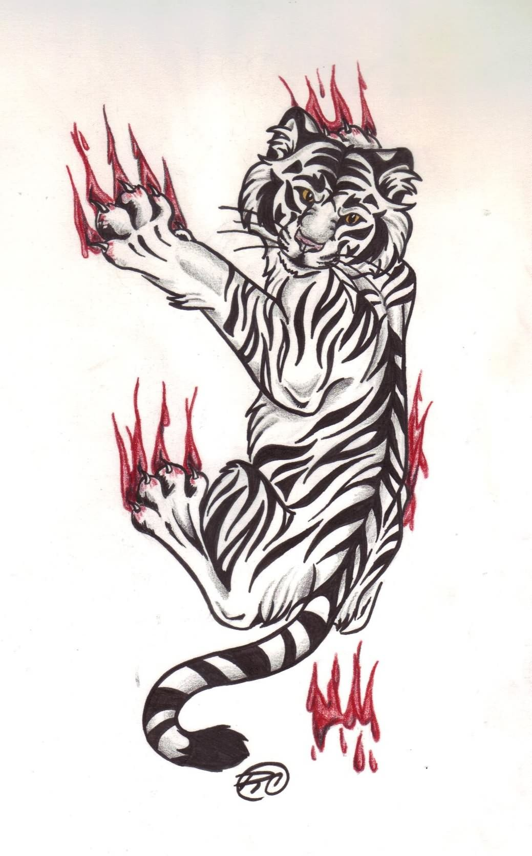 Tiger Tattoo Images Designs Ideas And Designs