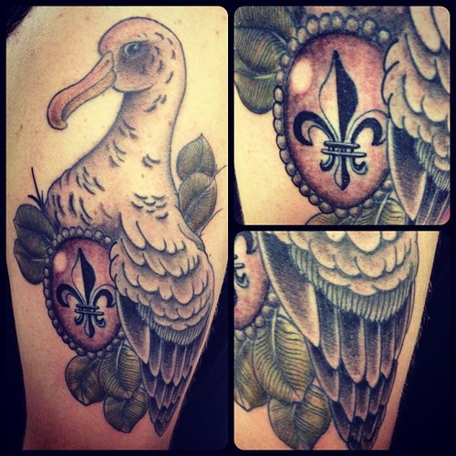 Albatross Tattoo Images Designs Ideas And Designs