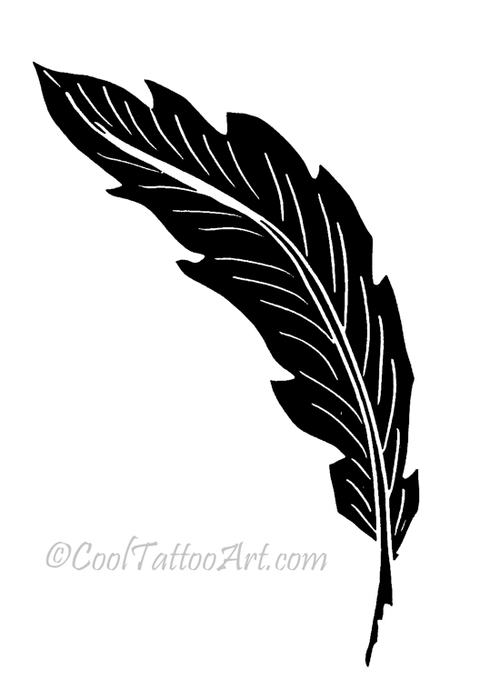 Feather Tattoos Art Designs Cooltattooarts Ideas And Designs