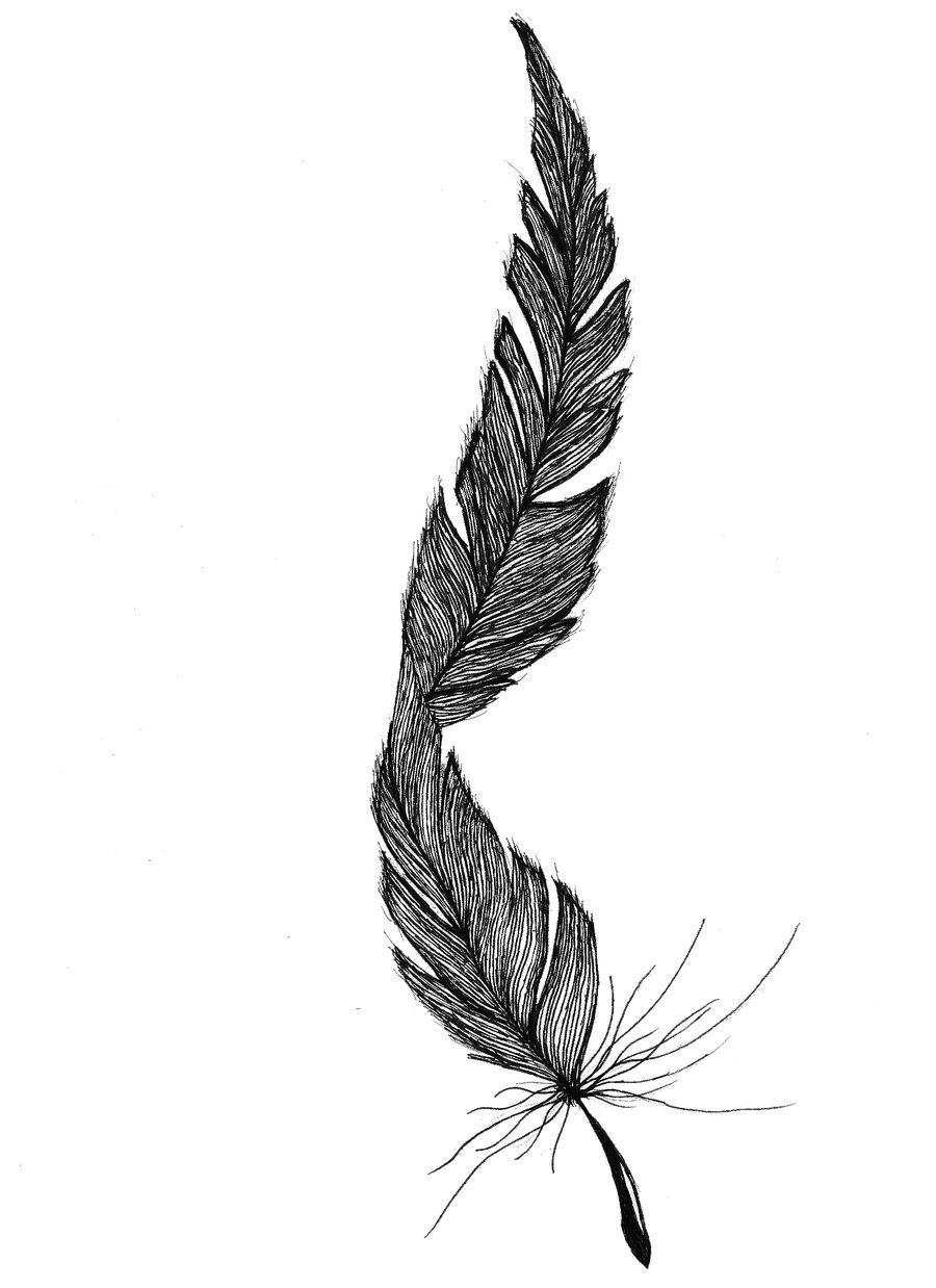 Feather Tattoos Designs Ideas And Meaning Tattoos For You Ideas And Designs