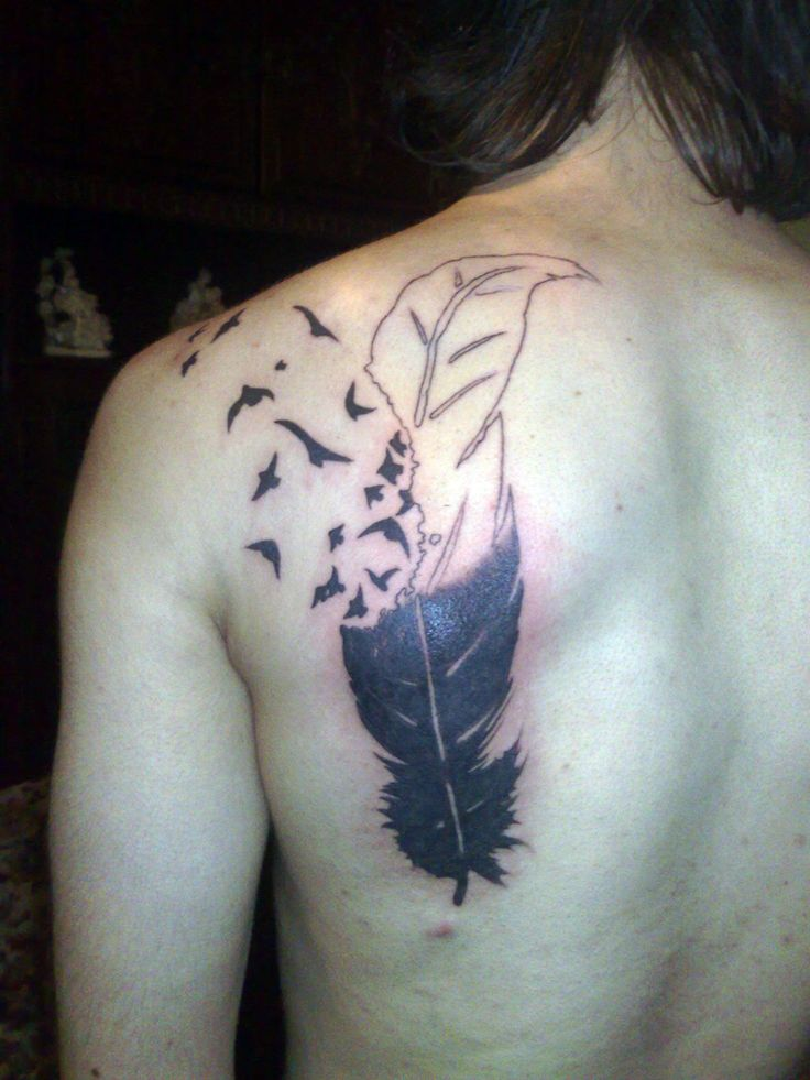 Best 25 Feather Bird Tattoos Ideas On Pinterest Feather Ideas And Designs