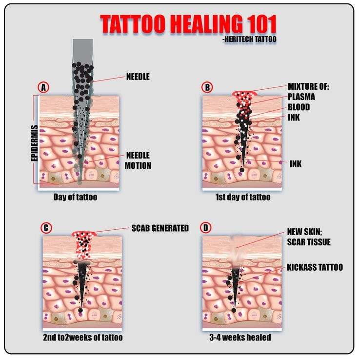 Best 25 Tattoo Aftercare Ideas On Pinterest Aftercare Ideas And Designs