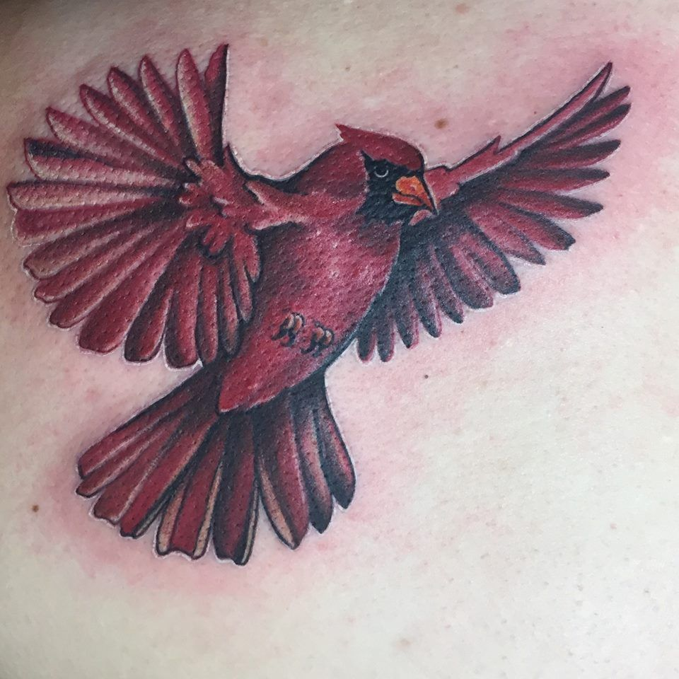 Cardinal Tattoo In Memory Of My Grandmother Done My Ideas And Designs