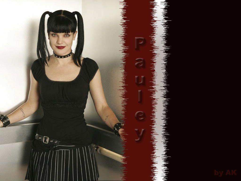 Paulie Paurette Pauley Perrette Coyote 20 Groovy Pauley Ideas And Designs