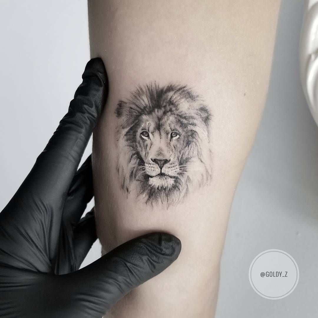 78 Lion Tattoo Ideas Which You Like August 2019 Lion Ideas And Designs
