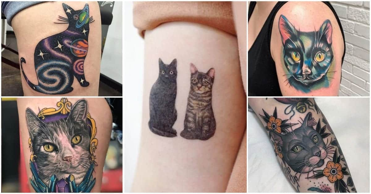 Collection Of Cat Tattoos That Are Too Purrfect For Words Ideas And Designs