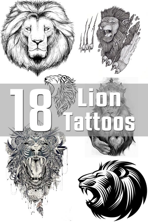 Lion Tattoo Designs The Body Is A Canvas Ideas And Designs