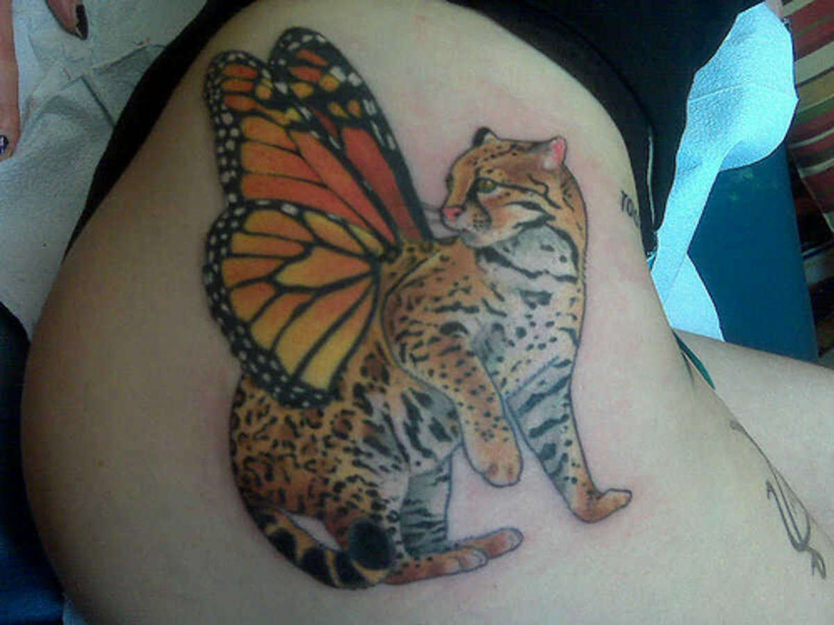 The Best Tats Of P*Ssy Cats Hubpages Ideas And Designs