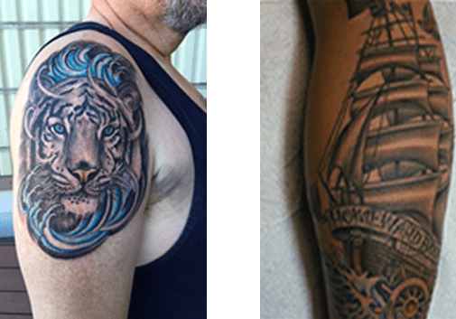 Tattoo Evolution Home Ideas And Designs