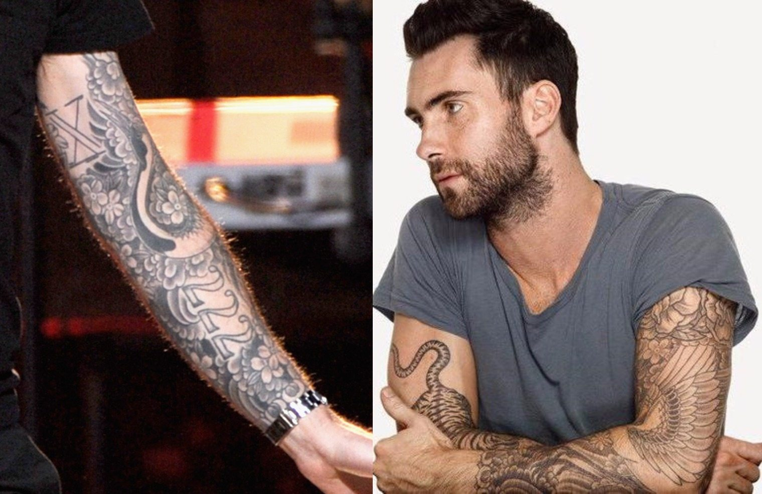 Adam Levine Tattoos Brother And House Ideas And Designs