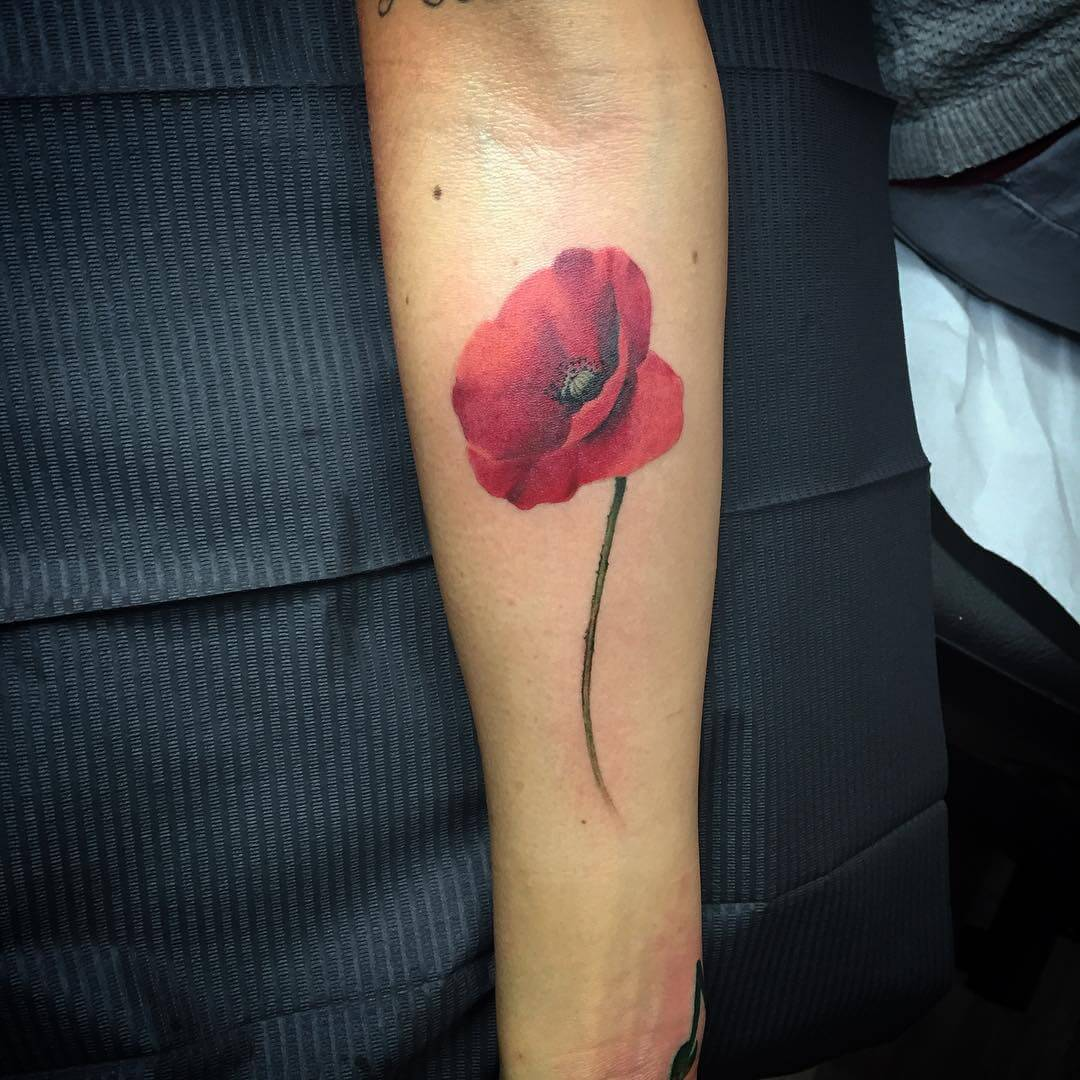 28 Poppy Tattoos Designs Ideas Design Trends Premium Ideas And Designs