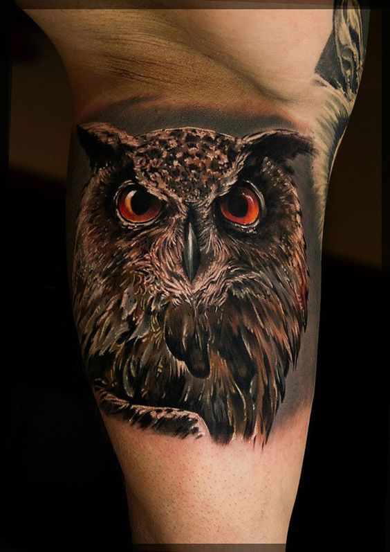 Owl Realism Tattoo Cool Tattoos Pinterest Realism Ideas And Designs