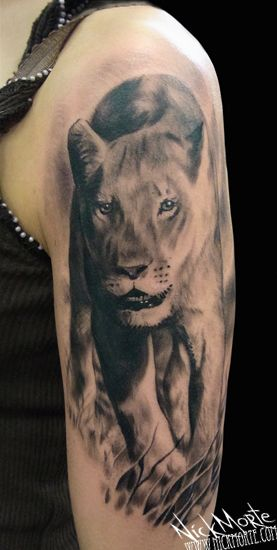 45 Best Images About Lioness Tattoo On Pinterest Ideas And Designs