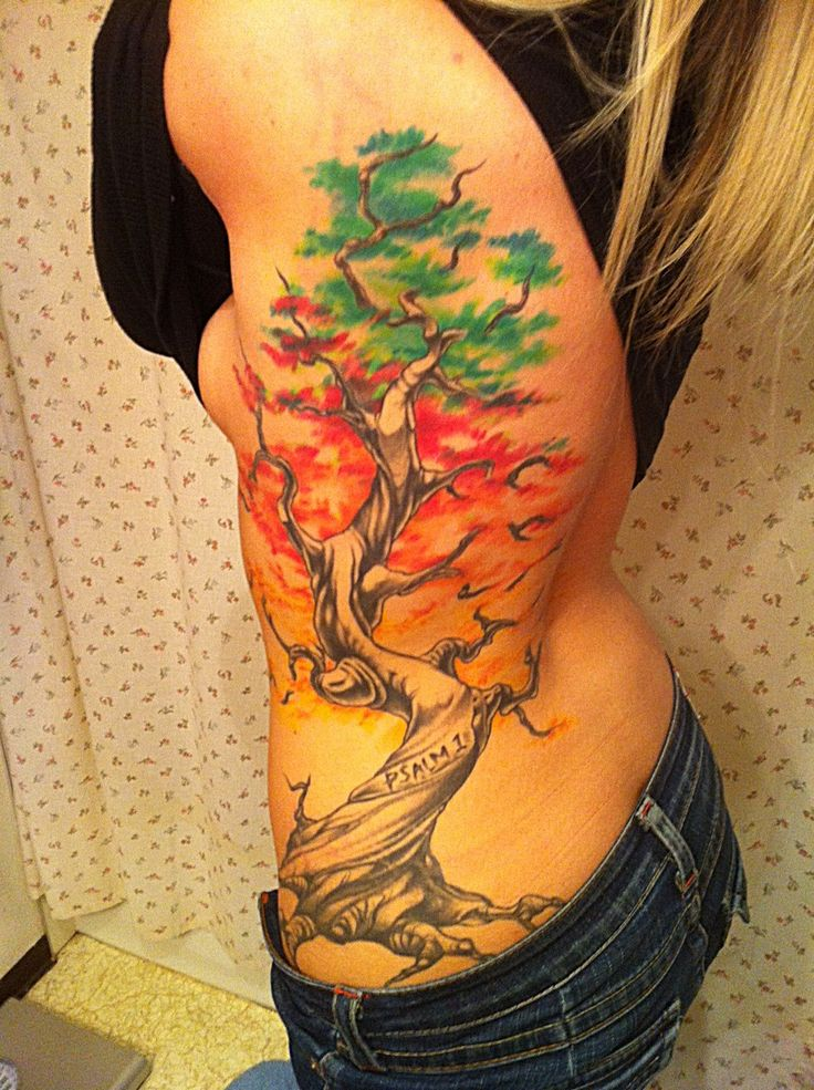 1000 Ideas About Cherry Tree Tattoos On Pinterest Tree Ideas And Designs