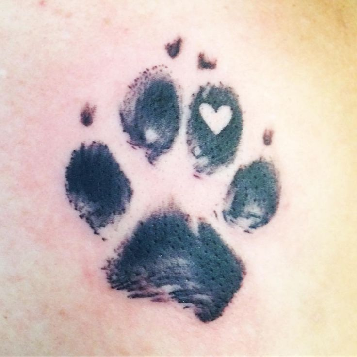 Best 25 Paw Print Tattoos Ideas On Pinterest Ideas And Designs