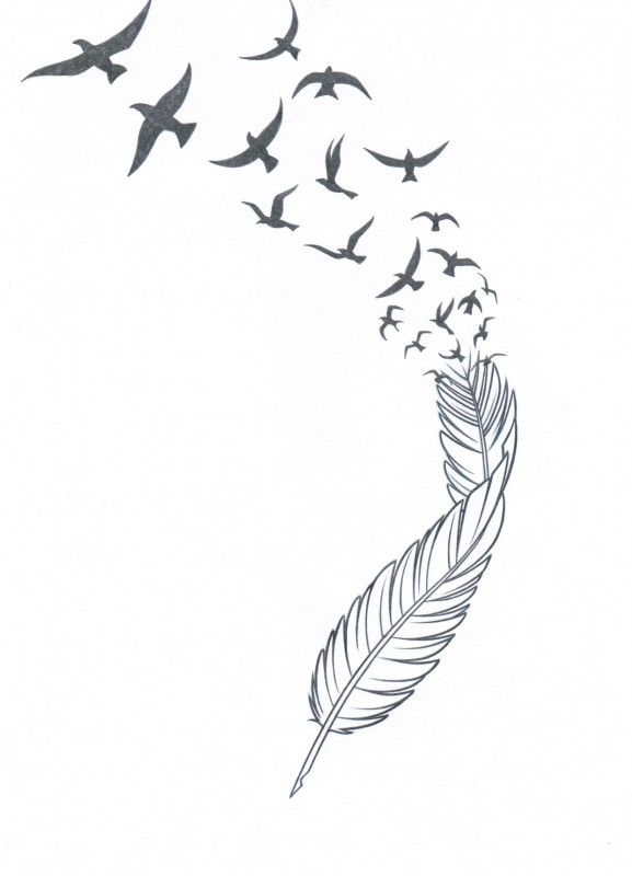 25 Best Ideas About Feather Bird Tattoos On Pinterest Ideas And Designs