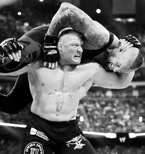 1000 Ideas About Brock Lesnar On Pinterest Sheamus Wwe Ideas And Designs