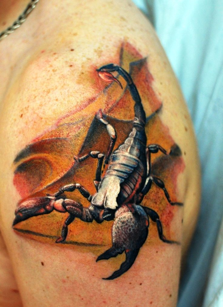 1000 Ideas About Scorpion Tattoos On Pinterest Tattoos Ideas And Designs