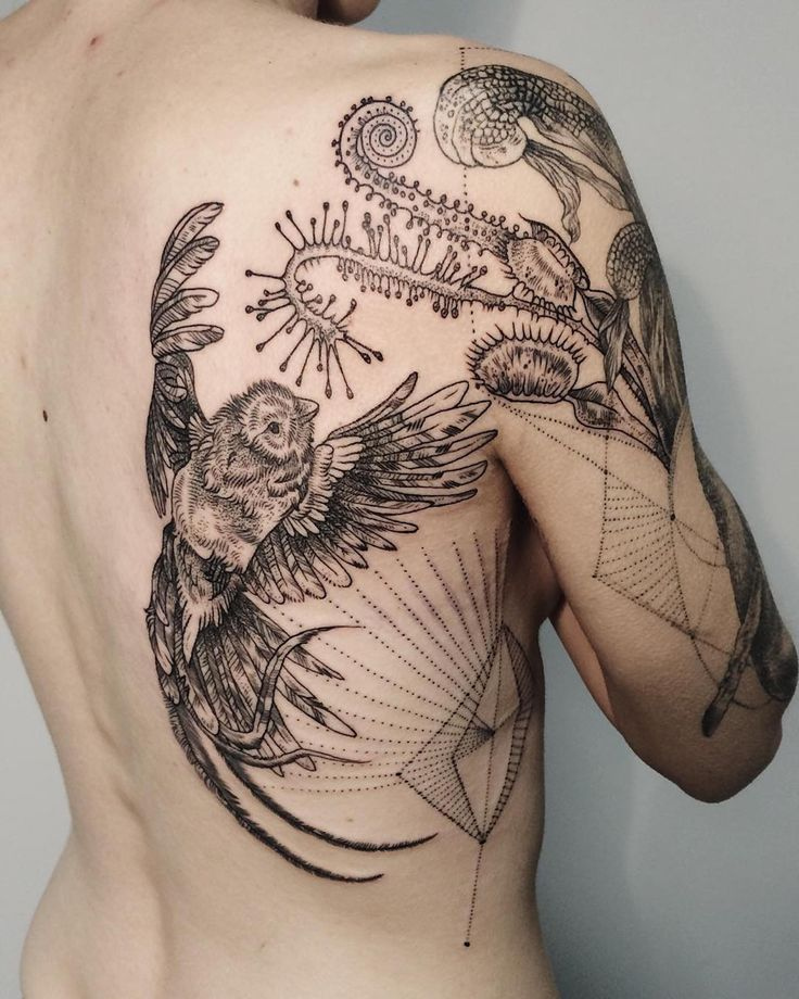 1000 Ideas About Bird Tattoo Back On Pinterest Back Ideas And Designs