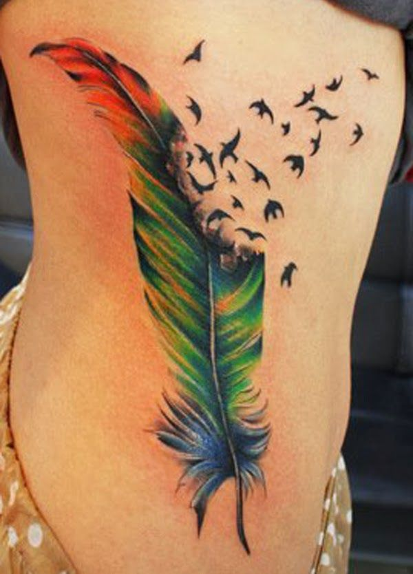Birds Feather Tattoo Color Meanings Tattoo Love Ideas And Designs